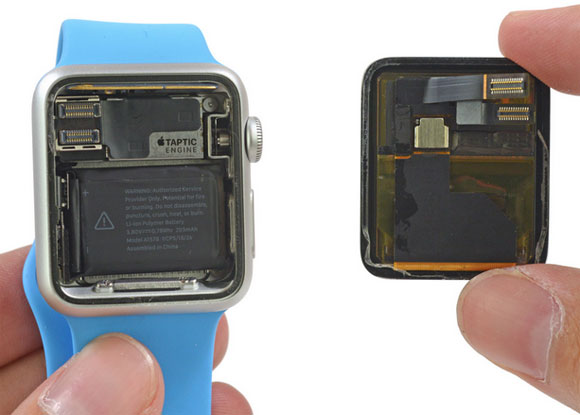 Dentro del Apple Watch