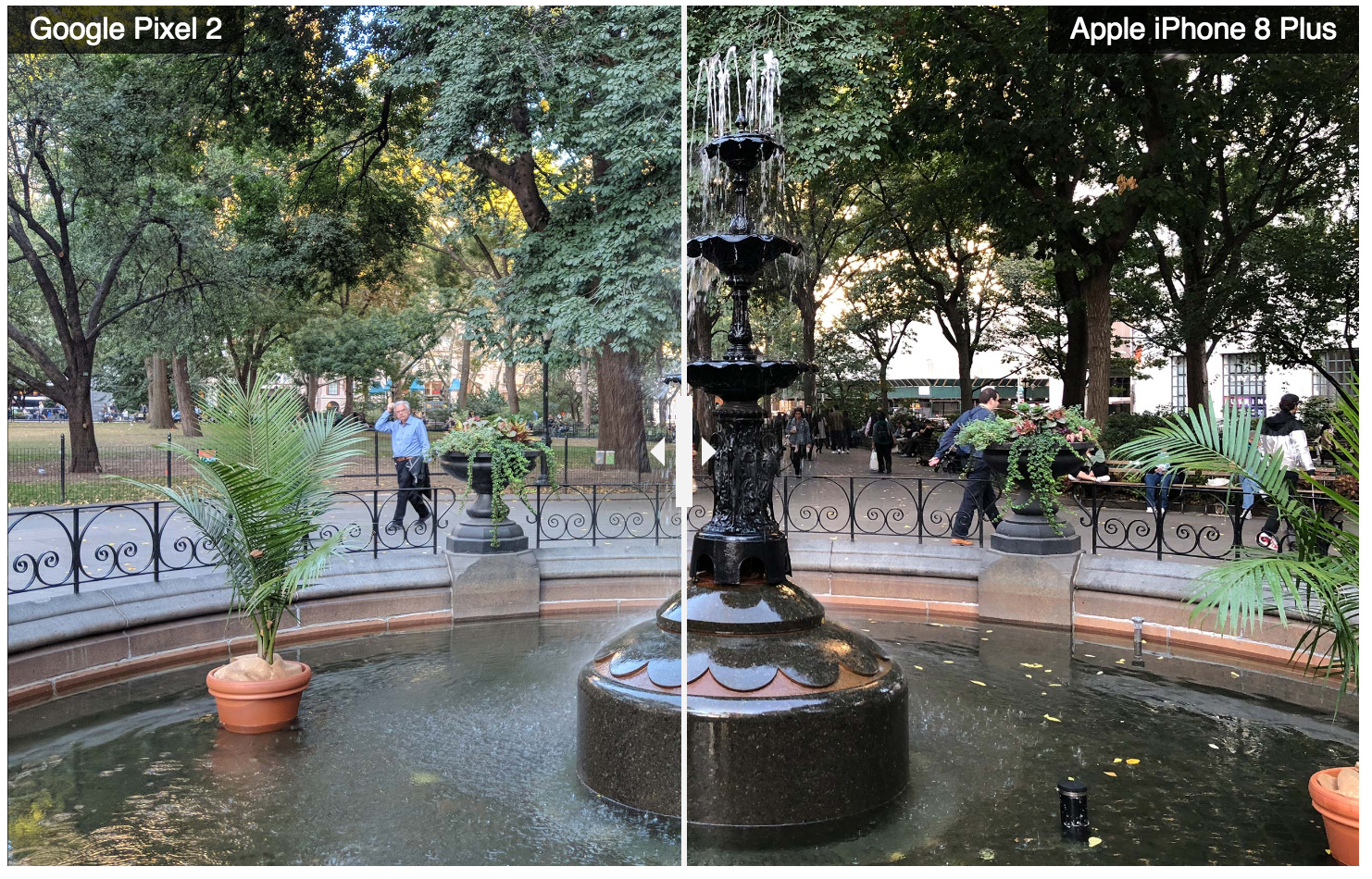 Comparison of images taken with iPhone 8 Plus and Pixel 2